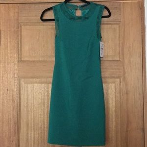 Zara Trafaluc Collection Dress.